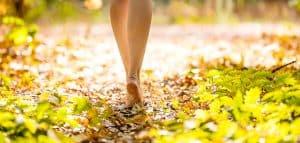 Marcher en nature pour se sentir vivant